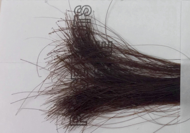 Example of a complete horse hair kit