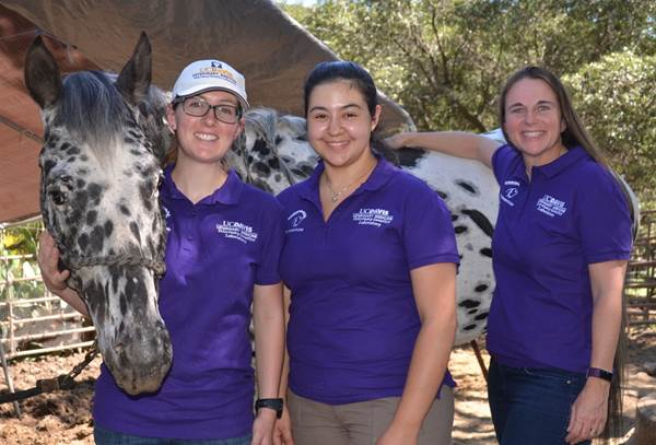 Dr. Rebecca Bellone with two of her graduate students and an appaloosa horse